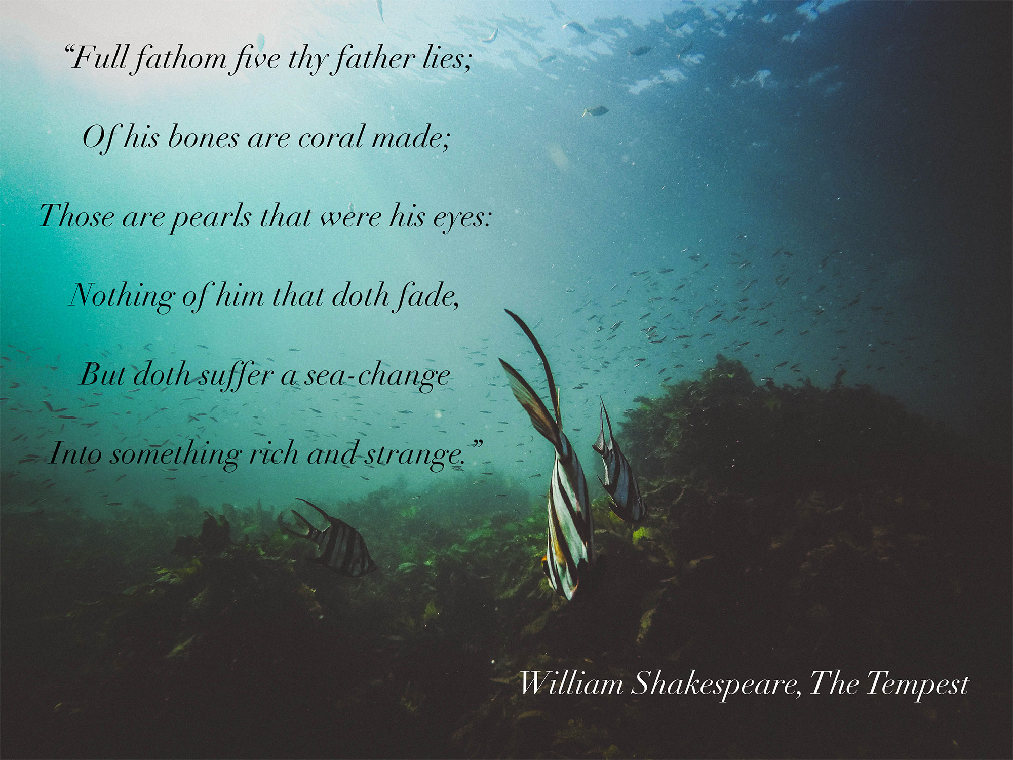 Image shakespearean-excerpt