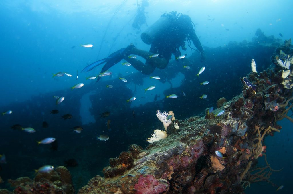 Image shipwreck-diving-coron-1024x680